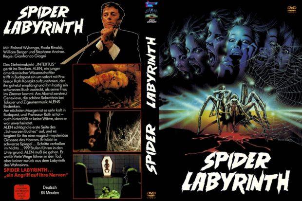 Spider Labyrinth DVD Kapak
