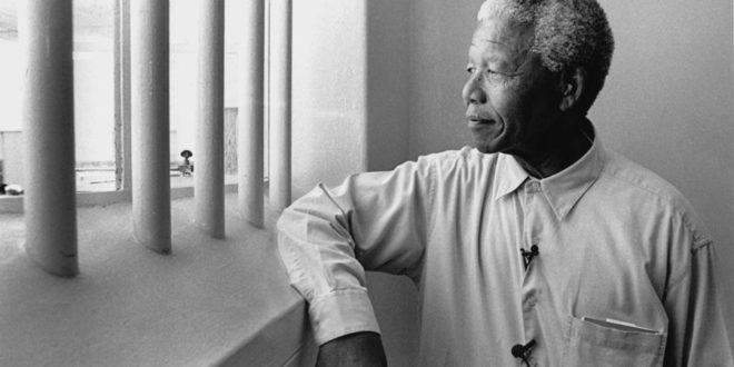 Bir Çınarın Sinemadaki Gölgesi: Nelson Mandela Filmleri 1 – Nelson Mandela
