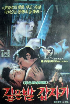 Suddenly In Dark Night poster 2