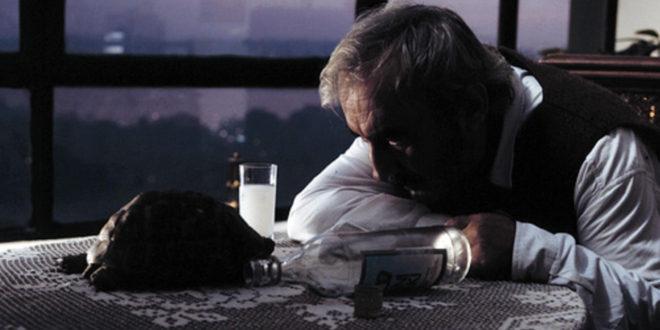 Bir Haşmet Asilkan Filmi: Aşk Filmlerinin Unutulmaz Yönetmeni (1990) 1 – ask filmlerinin unutulmaz yonetmeni