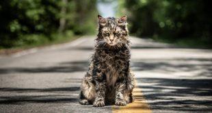 2019 Yılının Korku Filmlerine Ön Bakış 1 – Pet Sematary 2019