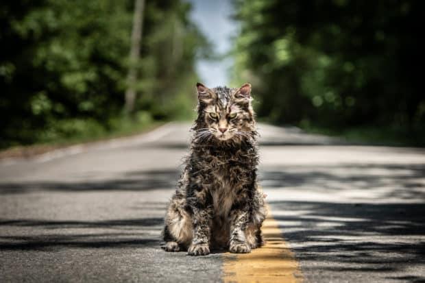 Unutmak İstemeseydik Gömmezdik Ölülerimizi: Pet Sematary (2019) 4 – 46579808795 d84cd2ebcc k