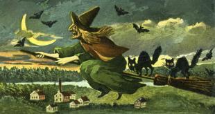Tılsımları Hazırlayın: Cadılar Hakkında Büyülü Bilgiler! 18 – Cadi Supurge Kedi