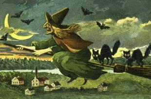 Tılsımları Hazırlayın: Cadılar Hakkında Büyülü Bilgiler! 8 – Cadi Supurge Kedi
